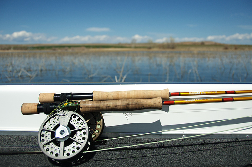 The Best 5 Fly Rods That Won't Fly Away - Reviews